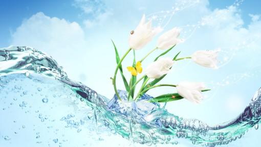 White_Tulips_Vector_Artwork