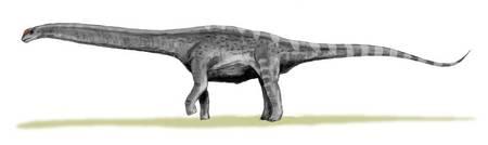 RTEmagicC_Argentinosaurus_Nobu-Tamura_wiki_cc-by-sa-30